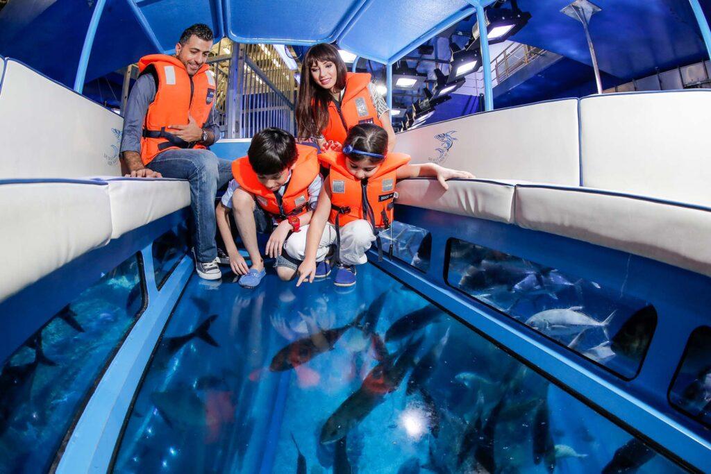 explorer experience dubai aquarium & underwater zoo