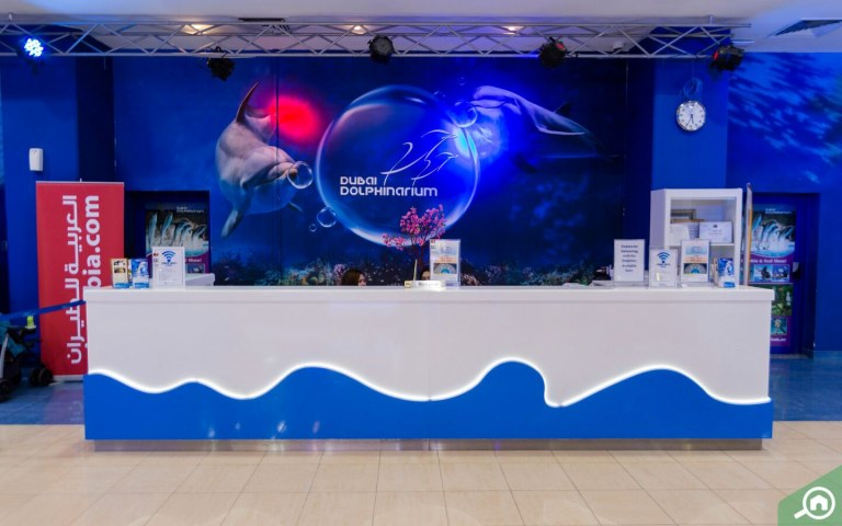 Dubai Dolphinarium reception